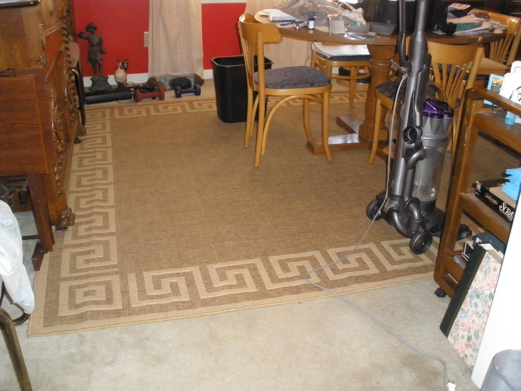 New Area Rug
