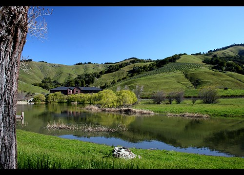 Skywalker Ranch -- Lake Ewok