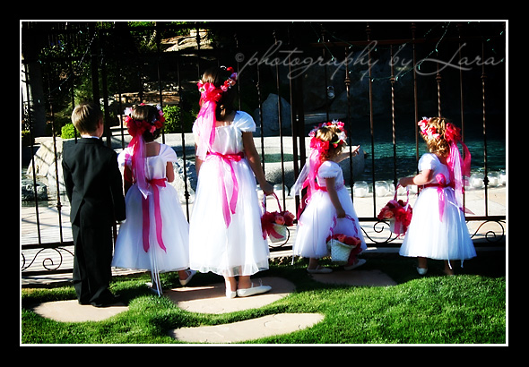 The little wedding party