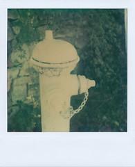 white hydrant