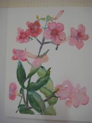 No-pencils floral