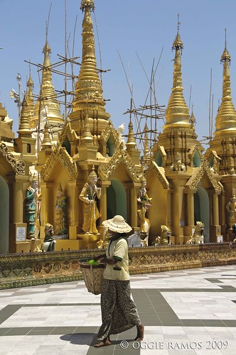 shwedagon golden stupas and lady