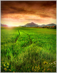 Track (Jean-Michel Priaux) Tags: china sunset red sky sun sunlight mountain france green art texture nature field grass photoshop painting way landscape spring village dream peinture dreaming valley alsace paysage printemps vosges anotherworld mattepainting epfig justimagine priaux mywinners aplusphoto theunforgettablepictures fz18