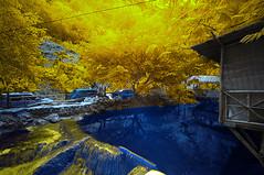 Warisan Rimba II (Firdaus Mahadi) Tags: nature water rock ir gold waterfall nikon rocks natural outdoor air naturallight waterfalls malaysia infrared kualalumpur nikkor goldie wp kl batu sejuk alam airterjun infraredphotography wilayahpersekutuan kemensah oprek warisanrimba semulajadi tokina1116mmf28 alamsemulajadi firdausmahadi firdaus kemensahwaterfall