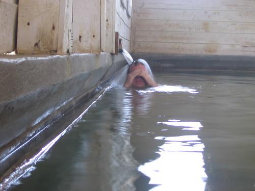 Hot sulphur water