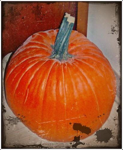 orange pumpkin antique headlesshorseman
