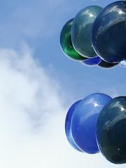 Blue bells (Moser's Maroon) Tags: blue sky reflection bells blauw lucht 2009 carillon leidscherijn reflectie bernardheesen klokken vleuterweide klokjestoren