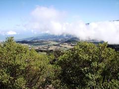 Blick auf die Plaine des Cafres (espressodoppio79) Tags: la nebel runion vulkan pitondelafournaise
