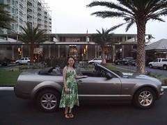 Mustang at Kahala