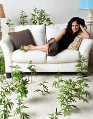 Weeds is back! (misterkrista) Tags: weeds milf marylouiseparker milfweed