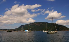 A Trip to Cowichan Bay (Explored) (Brandon Godfrey) Tags: water clouds boats islands baldeagle bluesky vancouverisland valley pacificnorthwest northamerica sailboats saltspringisland cowichan cowichanbay beautifulbritishcolumbia 1870kitlens sonya300