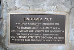 Photo of Bronze plaque number 8462
