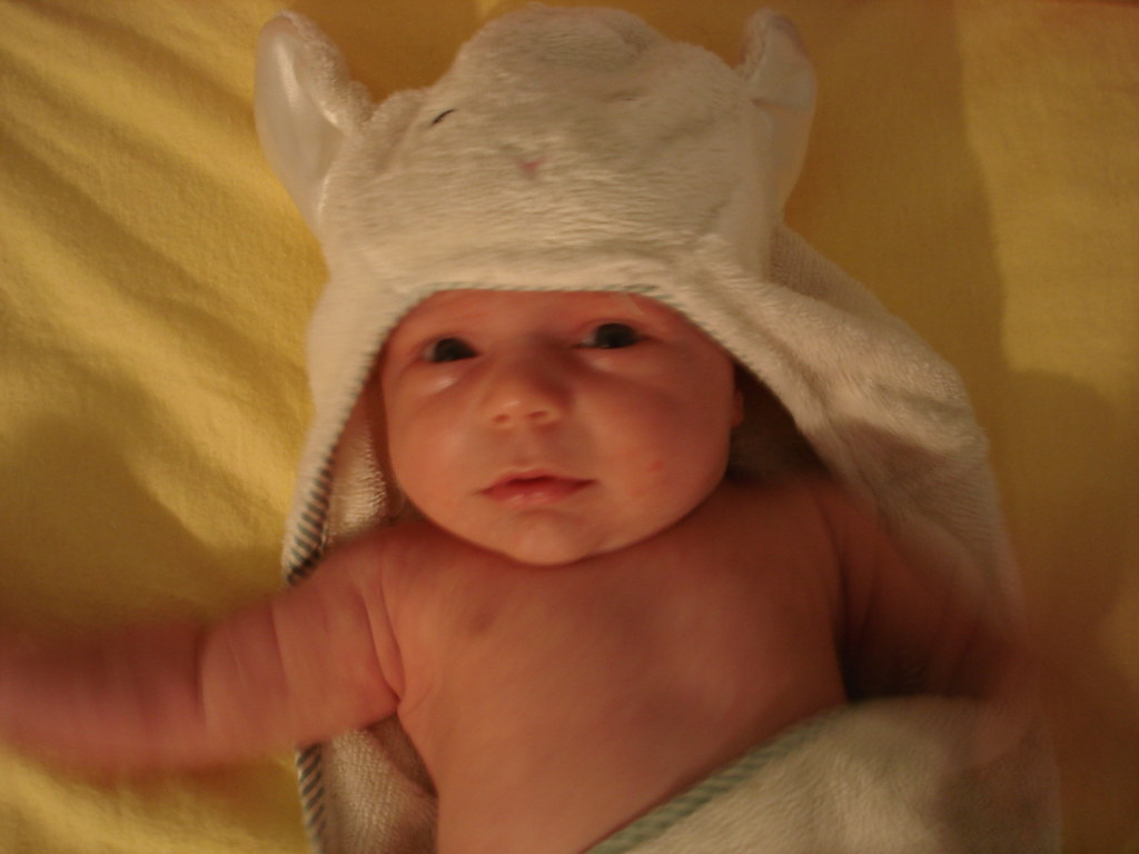 sheepy towel