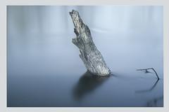 STUMPY (nalamanpics) Tags: longexposure blue abstract art artistic minimalistic ndfilter canonef24105mmf4lisusm canon5dmk11 mygearandme mygearandmepremium leebigstopper carbonone carbon441 manfrotto441carbonone
