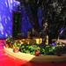 Il giardino di Frida