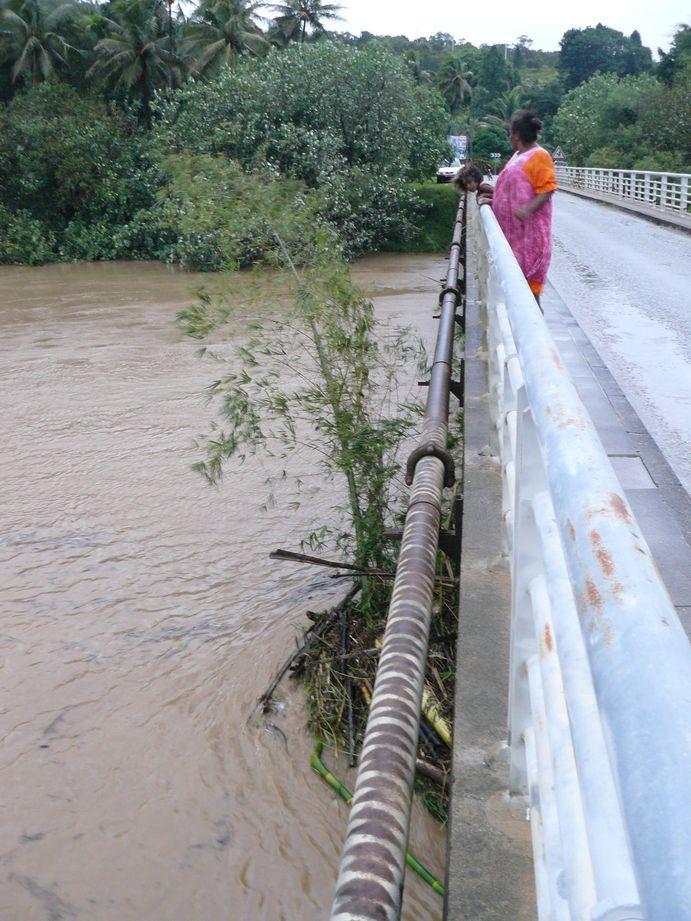 Depression tropicale fevrier 2009 Poindimie #8: Bambou coincé sous le pont d'Amoa