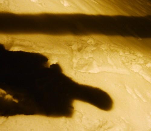 Der Schattenarchitekt