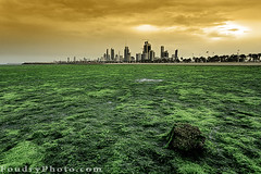 Kuwait SeaWeed Garden (A.alFoudry) Tags: city morning trees winter sea sky seaweed building tree green beach water stone canon buildings landscape eos high gulf no flag full filter shore silence frame land third 5d algae kuwait usm arabian fullframe scape archit