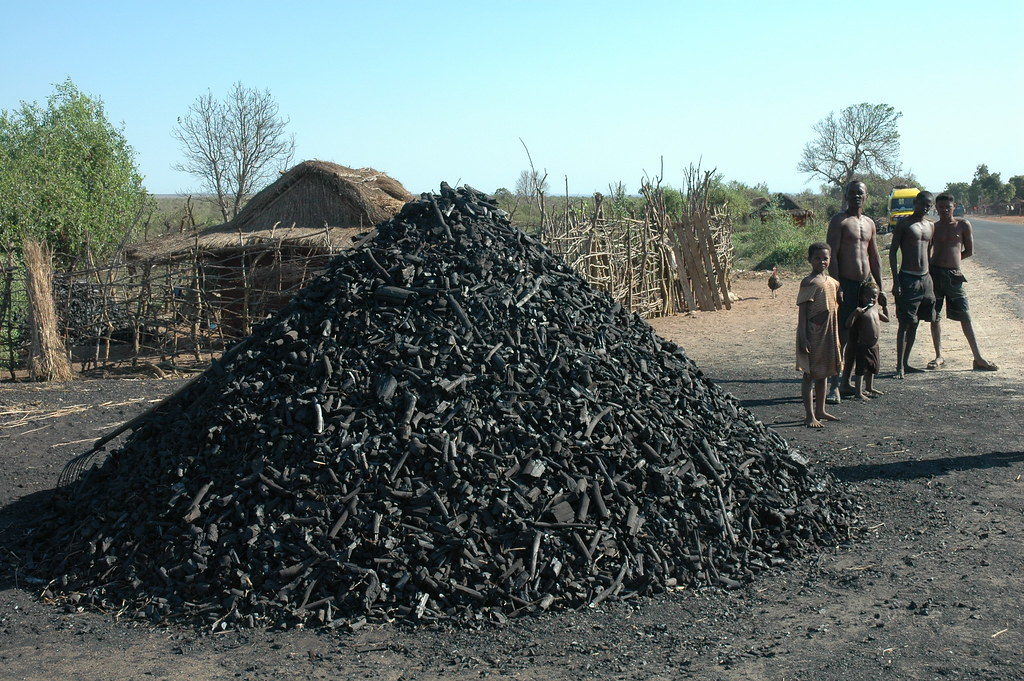 Charcoal pile in Madagascar