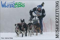 Michael Tetzner: von Winterberg im Sauerland nach Fairbanks, Alaska
