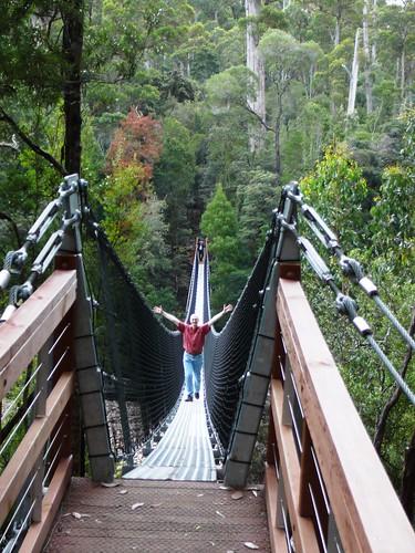 Scott on the First Suspension Bridge