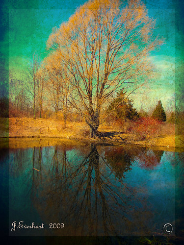 Reflections of Spring 2 by J.Everhart