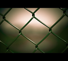 ~ The Other Side ~ (Komatoes) Tags: uk green fence wednesday 50mm wire nikon moody bokeh explore devon exeter 122 d40 nikond40
