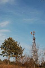 Pecatonica Forest Preserve DSC_2179 (reyub50) Tags: bridges windmills winterscene
