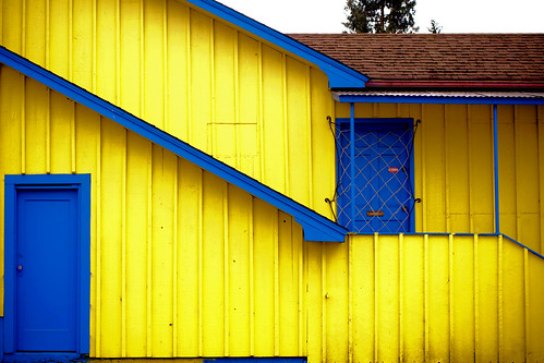 Bright & Cheery In Yellow & Blue