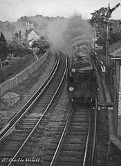 30915 BRIGHTON passing Keymer junction Signal Box with the 1741 Newhaven Harbour to Victoria Boat Train 1 Sept 1955