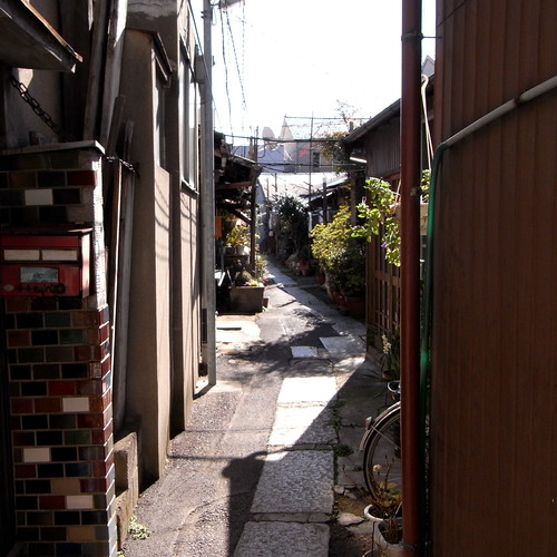 roji (a small alley) near the Nijuseiki-yokujo