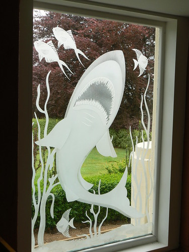 Etched Glass Shark, Dandenongs