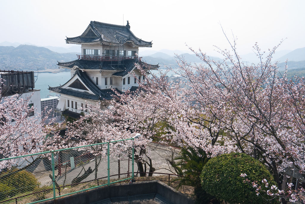 Onomichi castle with Sakura