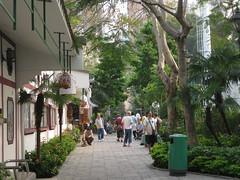 Bird Garden (vipnyc) Tags: birds garden hongkong yaumatei yuenpo