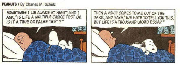 "Peanuts - ""Sometimes I lie awake at night..."""