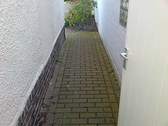Path Before