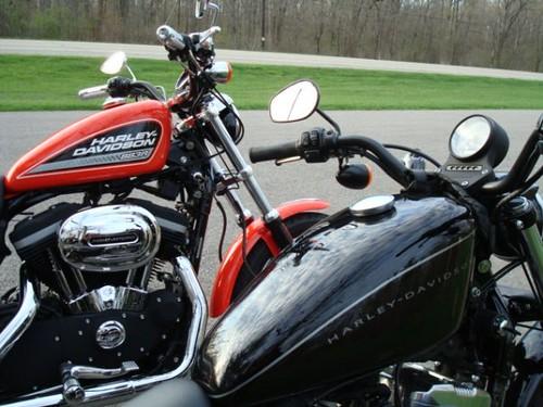 Harley Davidson Nightster. Harley Davidson nightster