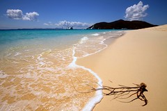 Relax.Take the scenic root (photocillin) Tags: blue sea white beach clouds relax island gold golden sand sandy scenic fluffy peaceful virgin shore tropical gorda root cay tranquil bvi britishvirginislands beachcombing