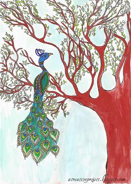 Springtime peacock