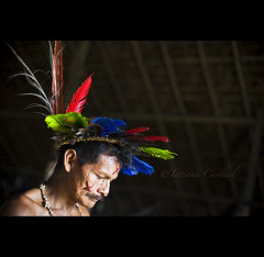 Bar- Amazonas ( Tatiana Cardeal) Tags: pictures brazil people urban heritage southamerica brasil digital photo amazon community village native picture culture tribal tradition tribe ethnic 2009 cultura tribo indigenous amazonas brsil amazonia indgena ethnology tradicional amazonie maloca memria conhecimento etnia ethnologie bar sogabrieldacachoeira ethnique ethnie    houseofknowledge casadoconhecimento itacoatiaramirim wapinmak