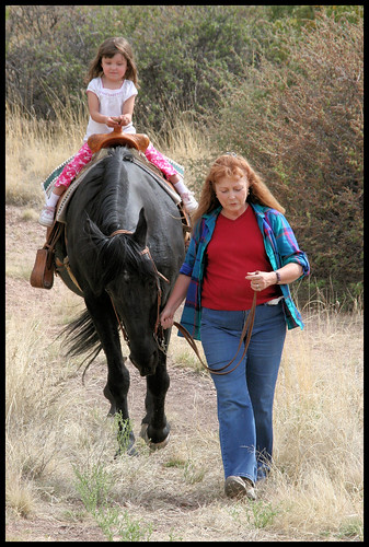 Sharon_horse