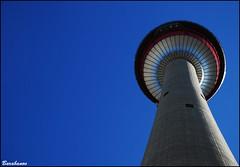 Calgary Tower (Miss Barabanov) Tags: road city trip travel cidade sky bw canada calgary buildings nikon downtown kodak pano centro pb panoramic alberta calgarytower prédios canadá viajar panoramico d80