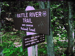 Rattle River Trail Sign (Nogwater) Tags: broken newengland ccd appalachiantrail