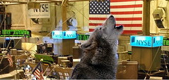 Resources and Concepts - WOLF ON WALL STREET