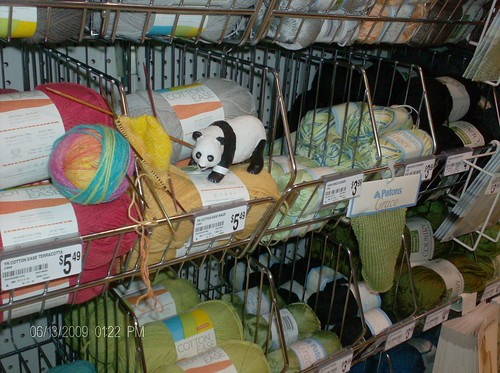 Opal Rainbow Stripes knitted sock at Michaels Craft Store with a giant panda