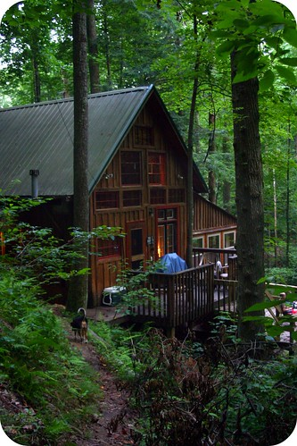 Serenity Falls Cabin