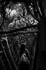 Narnia (margolove) Tags: trees girl leaves scary walk ominous branches hedge tangle labyrinth