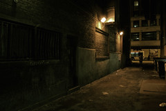 Chicago alley; Looking out from within (Ry_Niven) Tags: street city light chicago bus brick girl wall night dumpster dark lights scary alley nikon friend ryan dirty spooky brickwall psyco niven nivin d40 ryanniven midwestphotographer ryannivenphotography nivenphotography ryannivenphoto nivenphoto