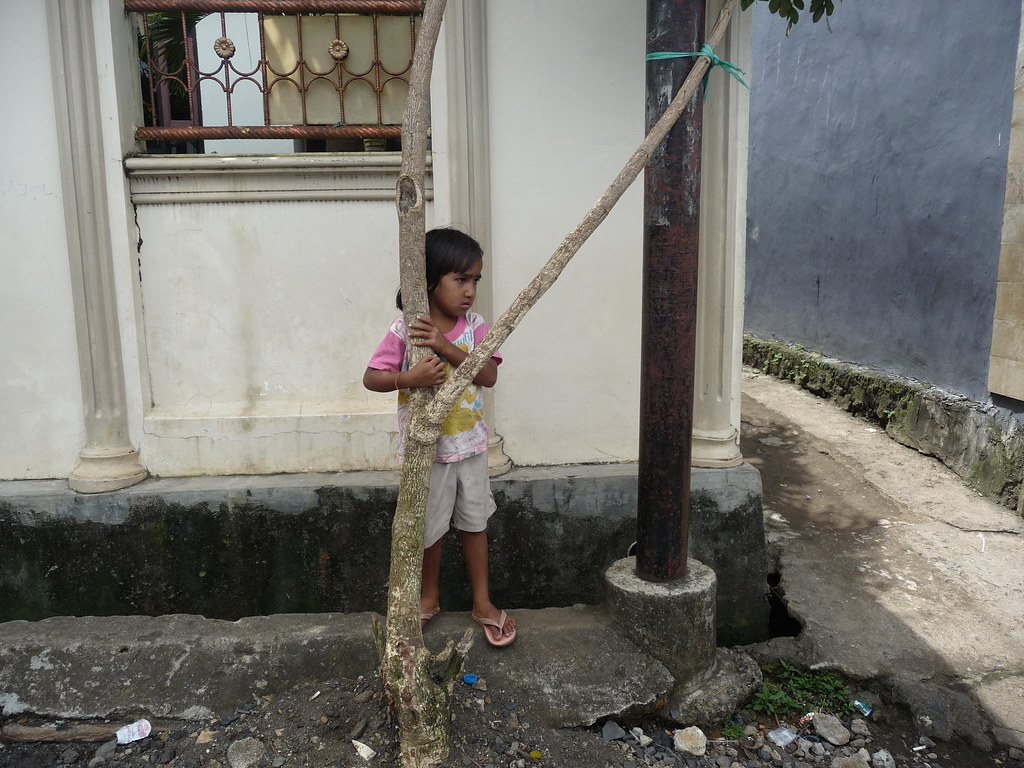 Manado (208)