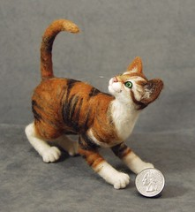 Taffy - needle felted calico Pritten (bjmaiee) Tags: sculpture pet cats pets art wool ebsq tiger kittens needlefelting collectable harlan needlefelt needlefelted one cat tiger team cats wooliture kind pritten prittens felted needle felt felting nfest calicocalico catcalico catstiger calico